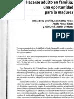 cap6vf.pdf