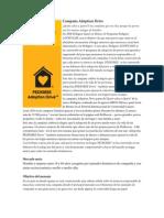 Campaña Adoptiondrive.pdf