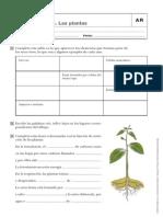 AR CONO 5º ANAYA UNIDAD 1.pdf