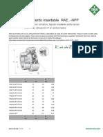RAE[1][1]..-NPP.pdf