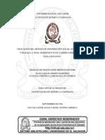 tesis dsodis.pdf