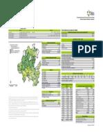 mapa_hidalgo_ESTADISTICO.pdf