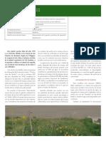 Cerdodag.pdf