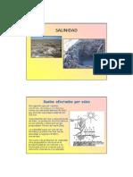 clase8_suelos_salinos.pdf