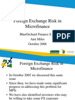 file Foreign Exchange Risk in Microfinance