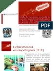 1 Hernández Alan.pdf