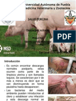 DESCARGAS VULVARES.pdf