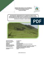 mejoramiento de la cobertura vegetal.pdf