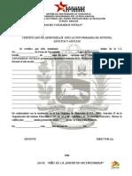 CERFTIFICADO DE APRENDIZAJES EDUCACION PRIMARIA JOVENES ADULTOS Y ADULTAS.doc