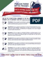 A Conservative's Voting Guide - November 4th Amendments