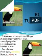 EL TUCÁN.ppt