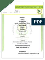 INVESITGACION VECTORES ALDO.docx
