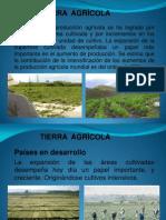 TEMA TIERRA AGRICOLA.pdf