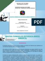 Term. de Ref Minero Ambiental - Henry H. Mantilla Arauca.pdf