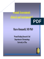 Marco+Romanelli+wound+assessment.pdf