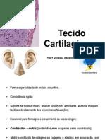 Tecido Cartilaginoso e Ósseo.pdf