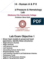 Anatomy and Physiology,  Heart, Bp and Hematology Labs Moodle