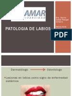 patologiadelabios-131210133450-phpapp01.pptx