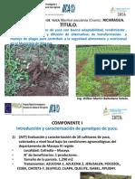 Presentación Honduras 3T 2013.pptx