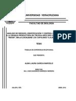 ANALISIS DE RIESGOS EN CULTIVO DE TRUCHA.pdf