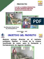 Ponencia Huancayo.ppt
