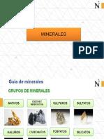 2 MINERALES (1).pdf