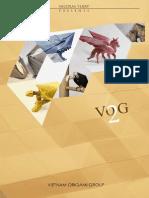 VOG 2.pdf