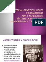 Replicación del ADN.pdf