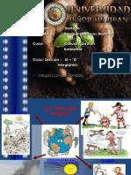 ronaldo trabajo de cultura y gestion ambiental..pptx