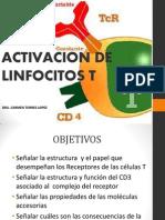 4 ACTIVACION DE CELULAS T1.pptx