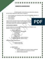 AMBIENTES SEDIMENTARIOS (2).docx