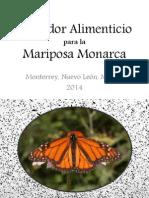 Corredor Alimenticio para la Mariposa Monarca