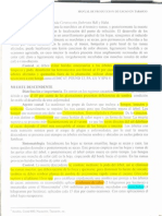 manual cacao Tabasco inifap2 19.pdf