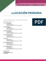 58579552 DCN Primaria