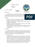 Proyecto1_Orga.pdf