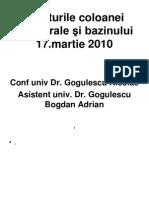 Cursul IV Ortopedie Coloana 25 martie 2010.ppt