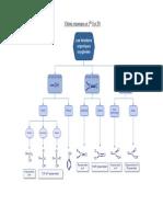 1S-TS_chimie-organique.pdf