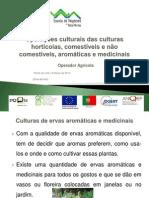 Culturas aromáticas e medicinais.pdf