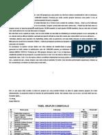TABEL GRUPURI COMERCIALE.doc