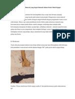 Sifat Optis Mineral yang dapat Diamati dalam Posisi Nikol Sejajar.docx