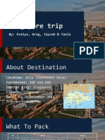travel project