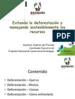 Evitando la deforestación y manejando sosteniblemente los recursos. Por Gustavo Suarez de Freitastx