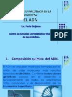 7.El ADN.pdf