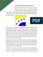 Bandera del Municipio Guajira.docx