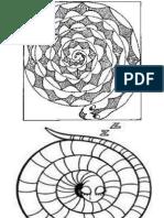PSV - Lingkaran Ular.pptx