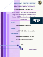 P. Contable Judicial.docx