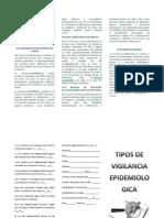 folleto SVE d.docx