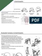 bio2_evolucion print 3_3.ppt