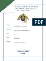 PRÁCTICA 2 (02-09-14).docx