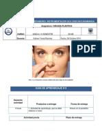 GUIA N6.pdf